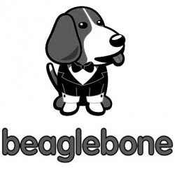 Beagle Bone